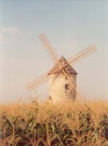 le moulin de kervoyal avec ses ailes 2